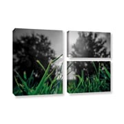 ArtWall 'Grass' by Revolver Ocelot 3 Piece Graphic Art on Wrapped Canvas Set