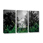 ArtWall Grass by Revolver Ocelot 3 Piece Graphic Art on Gallery-Wrapped Canvas Set