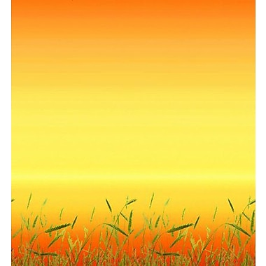 Pacon® Fadeless® Design Paper, Prairie Grass, 48