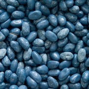 Blueberry Cobbler Jelly Beans, Denim, 5 lb. Bulk