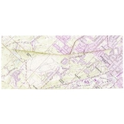 "JAM Paper® 4 1/8"" x 9 1/2"" Booklet Map #10 Envelopes w/Gum Closure, Map Print, 25/Pack"