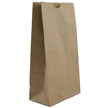 JAM Paper® Kraft Lunch Bags, Small, 4.125 x 8 x 2.25, Brown Kraft Recycled, 25/pack (690KRBR)