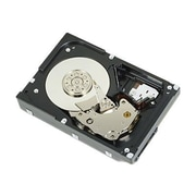 "Dell 400-AEFJ 1TB Near Line SAS 3 1/2"" Hot Swappable Internal Hard Drive"
