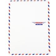 "JAM Paper® Open-End Airmail Envelopes, 9"" x 12"", 100/Pack (1430744c)"