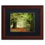 """Trademark Fine Art ''Through the Woods'' by Philippe Sainte-Laudy 11"""" x 14"""" Black Matted Wood Frame (886511799547)"""