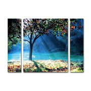 "Trademark Fine Art ''Rays of Hope'' by Beata Czyzowska Young 24"" x 32"" Multi Panel Art Set (886511916401)"
