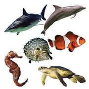 "Edupress EP3115 8"" x 6"" DieCut Ocean Life Bulletin Board Accents, Multicolor"