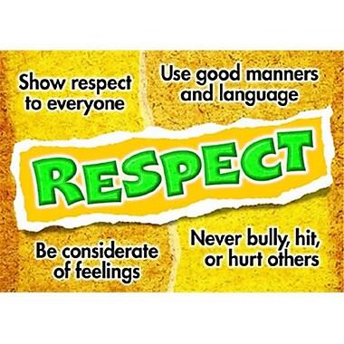Trend Enterprises® ARGUS® Poster, Respect