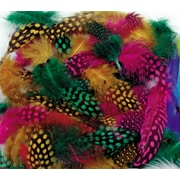 Chenille Craft® Multi Colored Spotted Feathers, Each
