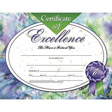 Hayes® Certificate of Excellence, 8 1/2