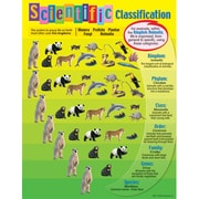 Trend Enterprises® Scientific Classification Learning Chart
