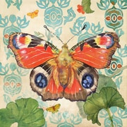 Marmont Hill European Peacock Butterfly by Evelia Graphic Art on Wrapped Canvas; 40'' H x 40'' W