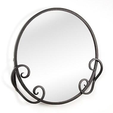 D'Vontz Iron Monterrey Mirror; Black Iron