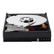 WD Blue WD1600AAJB, hard drive, 160 GB, ATA-100