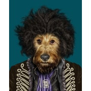 Empire Art Direct Pets Rock  ''Psychedelic'' Graphic Art on Wrapped Canvas