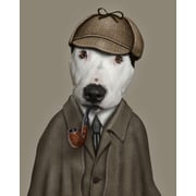 Empire Art Direct Pets Rock  ''Detective'' Graphic Art on Wrapped Canvas