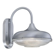 Millennium Lighting R Series 1-Light Outdoor Barn Light; Brushed Aluminum