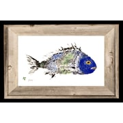FishAye Trading Company 'Blue Green Scup' by JFD Framed Painting Print