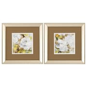 Propac Images Soft Floral 2 Piece Framed Painting Print Set