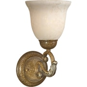Forte Lighting 1-Light Wall Sconce in Mojave