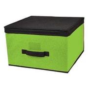 Sunbeam Jumbo Storage Box; Green