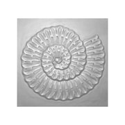 Leila's Home Living 'Carved Wood Shell' Wall Decor; Matte Metallic Silver