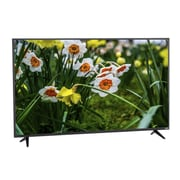 "Refurbished Vizio D55U-D1 55"" 4K Smart TV"