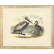 Art Virtuoso Spoonbill and Brown Pelican Framed Painting Print; Natural Burl Finish