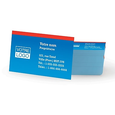 Staples® – Cartes professionnelles le jour même, recto simple, couleur mate, ens./250 cartes