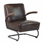 PoliVaz Savannah Arm Chair