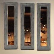 Rayne Mirrors Molly Dawn Mirror Panel; 25.5'' H x 9.5'' W x 0.75'' D