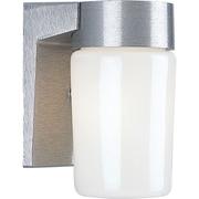 Progress Lighting 1 Light Wall Lantern; Satin Aluminum