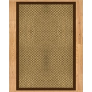 Natural Area Rugs Preston Hand Crafted Brown Area Rug; 4' x 6'