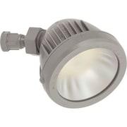 Progress Lighting 1-Light LED Flood Light; Metallic Gray