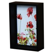 AdecoTrading Decorative Shadow Box Style Picture Frame; 4'' x 6''