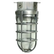 Woods L1706BS Traditional 100W Incandescent Weather Industrial Light, Ceiling Mount, Brushed Steel