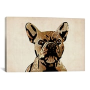 iCanvas Michael Tompsett 'French Bulldog' Graphic Art on Canvas; 41'' H x 61'' W x 1.5'' D