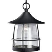 Progress Lighting Prairie 1 Light Outdoor/Indoor Hanging Lantern