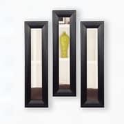 Rayne Mirrors Molly Dawn Mirror Panel (Set of 3); 35.75  H x 9.75  W
