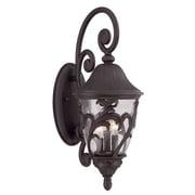 Acclaim Lighting Capri 1 Light Outdoor Wall Lantern