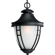 Progress Lighting Fairview 1 Light Outdoor Hanging Lantern; 100W Medium Base