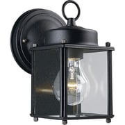 Progress Lighting 1 Light Outdoor Wall Lantern; Black