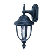 Acclaim Lighting Monterey 1 Light Outdoor Wall Lantern; Matte Black