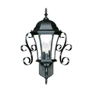 Acclaim Lighting New Orleans 3 Light Wall Lantern; Matte Black