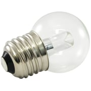 American Lighting LLC 120-Volt (5500K) LED G40 Light Bulb (Set of 25); 1.2
