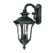 Acclaim Lighting Augusta 3 Light Outdoor Wall Lantern; Matte Black