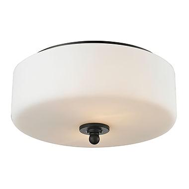 Z-Lite – Luminaire encastré Savannah 414F2, 2 ampoules, opale mate
