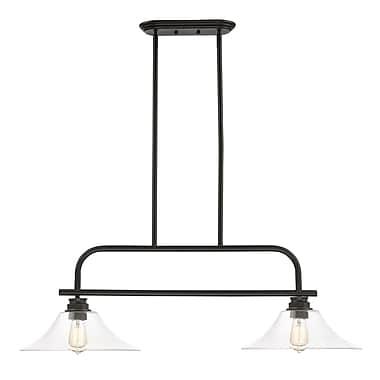 Z-Lite – Luminaire suspendu Annora pour îlot/table de billard 428-2B-OB, 2 ampoules, transparent
