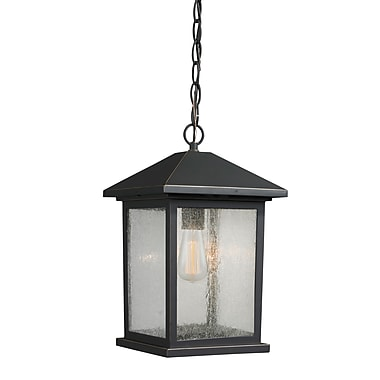 Z-Lite 531CHM-ORB Portland Outdoor Light Fixture, 1 Bulb, Clear Seedy