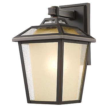 Z-Lite 532B-ORB Memphis Outdoor Light Fixture, 1 Bulb, Clear Seedy + Tinted